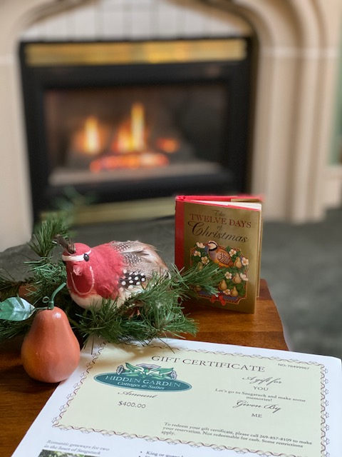 A light gas fireplace in the background of a table with a gift certificate and christmas book in focus in foreground.