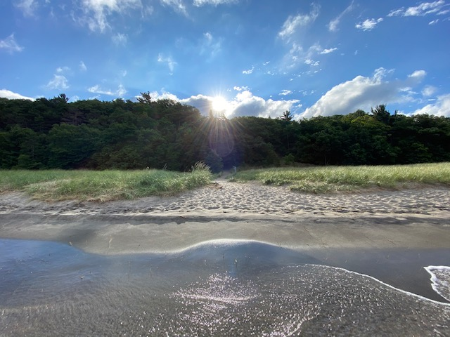 Sun peeking over ridge of green trees, upon waters edge as waves lazily lap up against a grassy shore just beyond the sand.